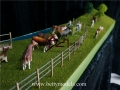 Australia cattle farm scene scale models